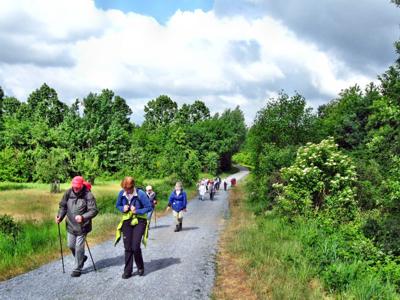 Wanderung des Eifelvereins auf der Sophienhöhe